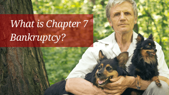 Debt-relief-attorney-lawyer-Lancaster-County-PA-Pennsylvania-Bankruptcy-Chapter-7