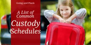 Common Custody Agreements